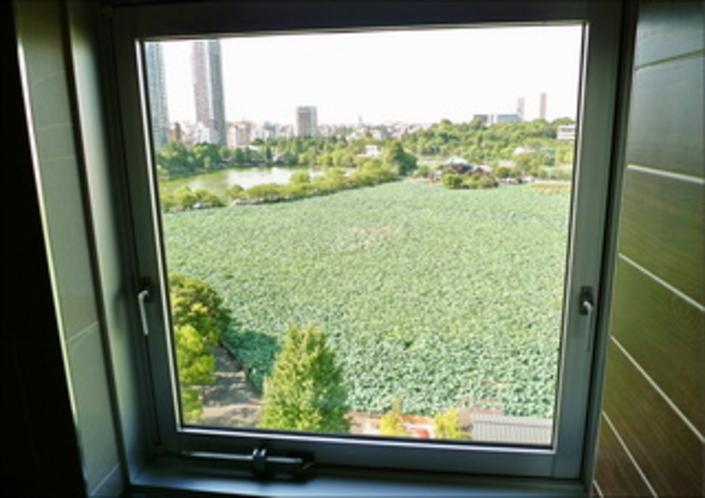 1005号室浴室からの眺望