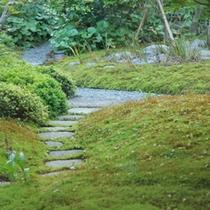 ◆関雅の庭