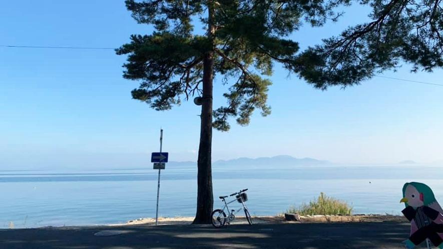 *【レンタサイクル】湖畔の爽やかな春の風を感じながらプチビワイチ体験はいかがでしょうか♪