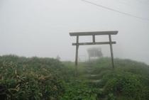 標高1541mへの誘い 中津明神山 山頂①