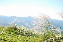 中津明神山からの眺めなどご紹介 9