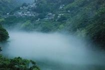 霧のかかる仁淀川 集落と茶畑②