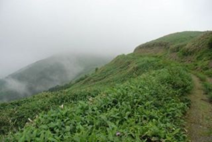 標高1541mへの誘い 中津明神山 雨雲が急に上昇し始めた