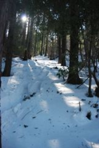しもなの郷 氷の滝鑑賞ツアー 雪山に午後の光がさす きれいだな
