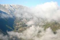 ひょうたん桜で有名な桜地区 見える景気は対岸の宗津地区の山10