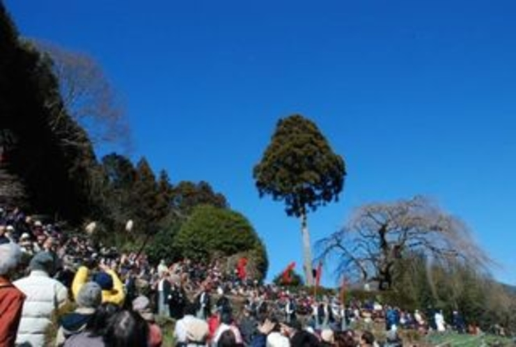 2012秋葉まつりギャラリー 細い山道を秋葉神社を目指す「練り」。