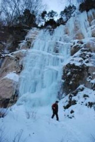 しもなの郷 氷の滝鑑賞ツアー 赤滝 大きさは 約高さ30m 幅20m