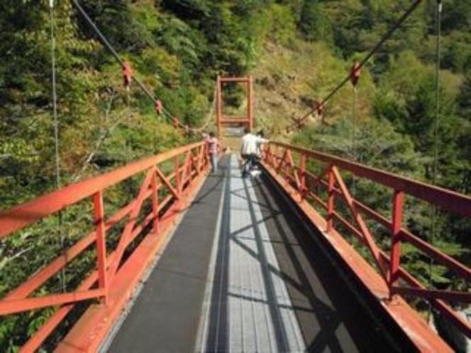 これは 宝来荘の横の吊橋!眺めがいいですよ