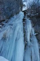 しもなの郷 氷の滝鑑賞ツアー 白滝