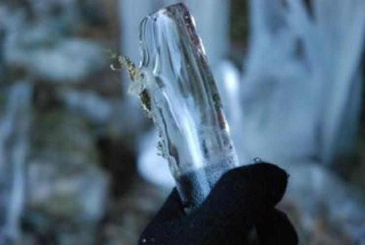 しもなの郷 滝ツアーより いろんなツララの画像をご紹介 まるでガラスの棒