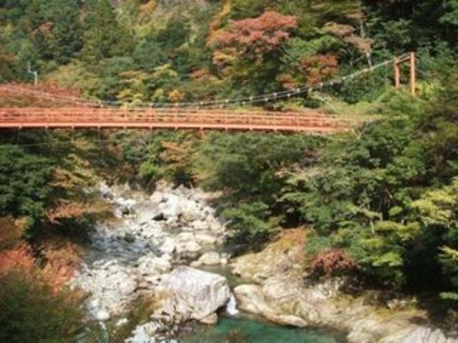 安居渓谷の秋画像11 例年紅葉は10月下旬から