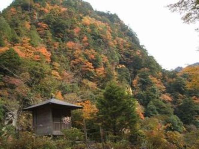 安居渓谷の秋画像4