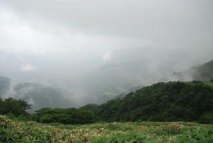 標高1541mへの誘い 中津明神山 周りを見ると 幻想的な感じ