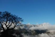 ひょうたん桜で有名な桜地区 見える景気は対岸の宗津地区の山8