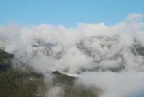 ひょうたん桜で有名な桜地区 見える景気は対岸の宗津地区の山2