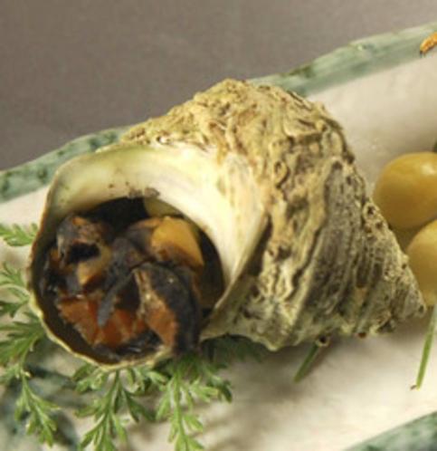 焼きサザエ(焼き小皿の一例)