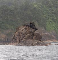帽子岩(山陰海岸ジオパーク)