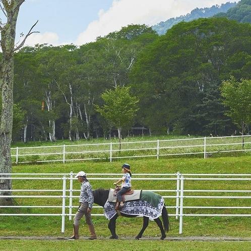 戸隠牧場乗馬