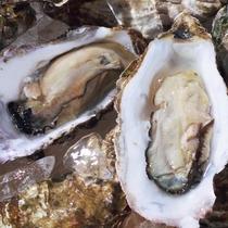 当地の海幸の名物ナンバーワンの牡蠣(かき)…1~4月には牡蠣料理のご夕食も♪