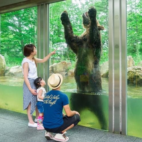 大きなクマさん!