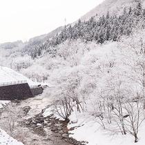 *冬の景色/ピンと張り詰めた空気に心が洗われるような雪景色。