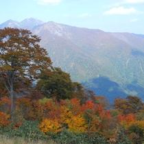 *標高1977mの谷川岳が秋色に染まります。