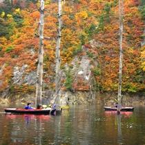 *秋のカヌーは色づく紅葉を心ゆくまで満喫。
