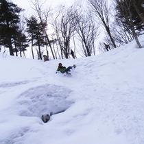 *アクティビティ・スノーシュー/子供から大人まで楽しい、雪の上をお散歩のようにトレッキングするツアー