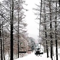 *冬の景色/スキースノボ、スノーシューなどのアクティビティも楽しめます。