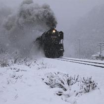 【SL湯けむり号】が陸羽東線の小牛田〜新庄間を運行。