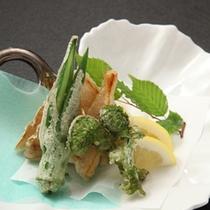 ■山菜の天ぷらイメージ■