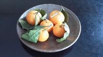 季節のフルーツ8