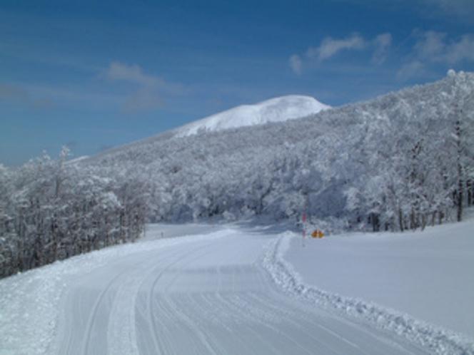 樹氷/ブナ林歩くスキーツアーコース2