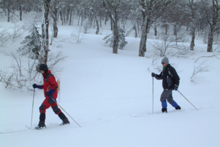 XCクロスカントリースキー、歩くスキー体験