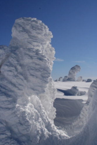 樹氷スノーシュートレッキング(東に歩いて30分のモンスター)04