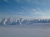 樹氷スノーシュートレッキング(南に歩いて15分のアイスモンスター)01