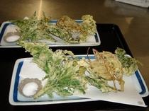 料理一例・山菜の天ぷら