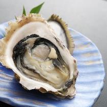 夏の名物《岩牡蠣》