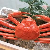 近海蟹イメージ