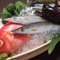 *近海で獲れた鮮度にこだわりのある魚介類をお楽しみください