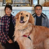 本当はとってもやんちゃな愛犬です!こんなに大人しそうに写っているのは初めて。
