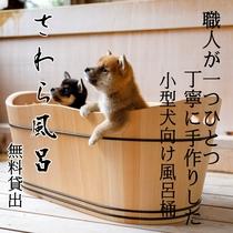 職人が手作りした「さわら風呂桶」は無料貸出。ワンちゃんも温泉浴。
