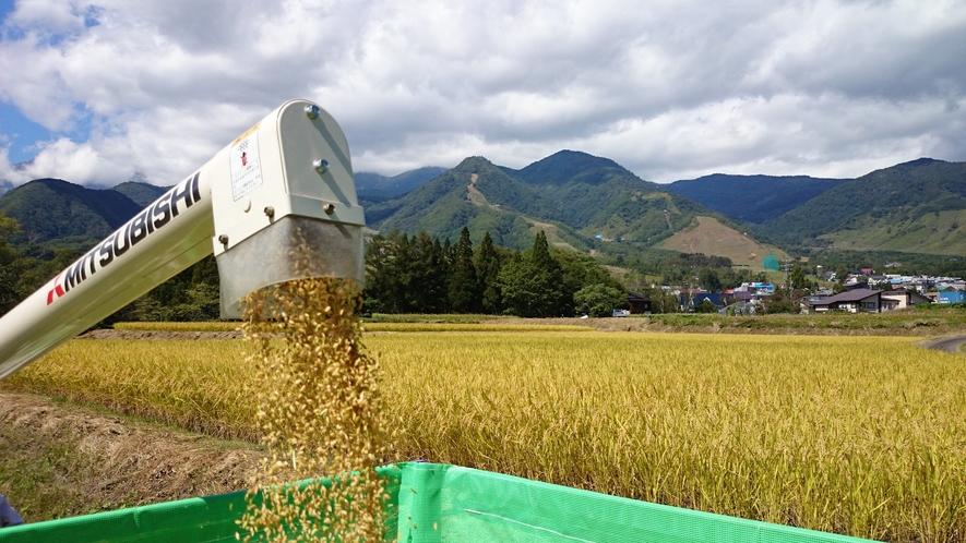 ベルハートは昔も今も自家製のお米にこだわっています。