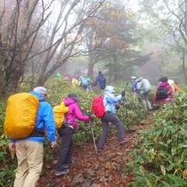 *【イベント】大菩薩登山。山好きに人気の日本百名山「大菩薩嶺」を歩きます。