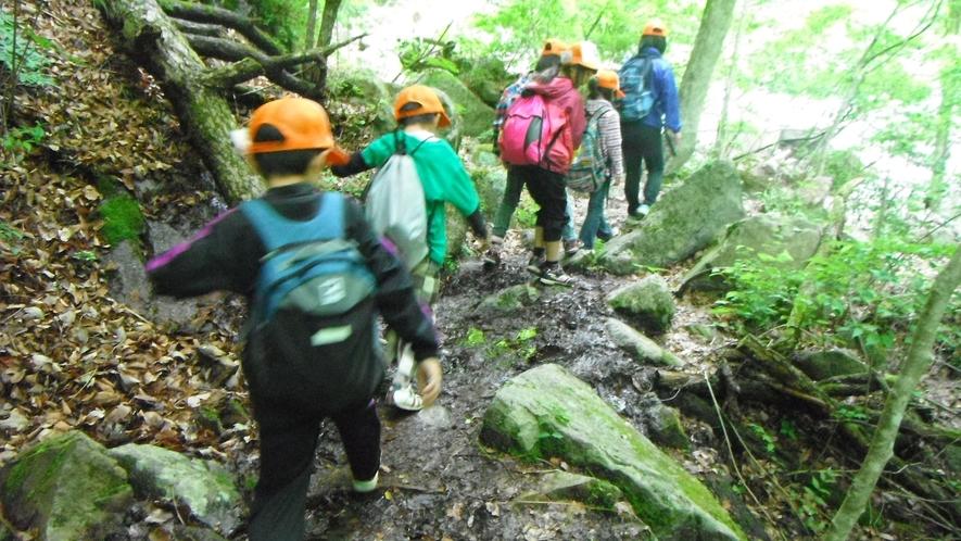 *【イベント】ハイキングでは初心者や子供も安心のコースを歩きます。