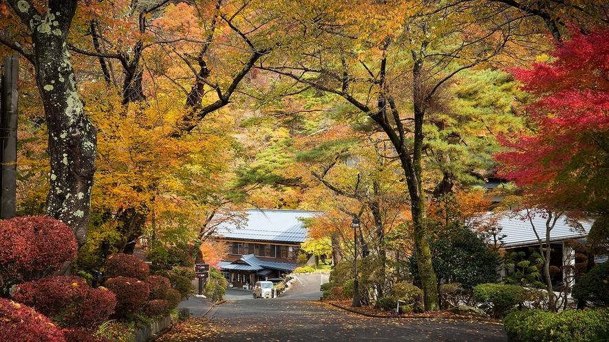 紅葉の頃 県道からの坂を下ってお大沢温泉へ