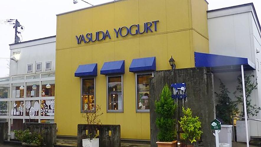 *【周辺観光】ヤスダヨーグルトショップ/お土産購入にオススメ♪アイスやワッフルも大人気♪♪