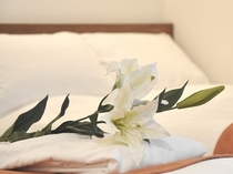 2種類の枕