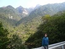 林道から望む冠雪の屋久島連山