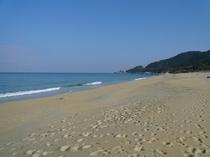 うみがめ上陸日本一のいなか浜
